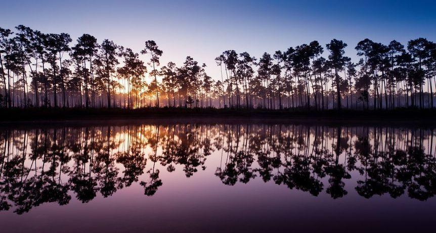 Homestead in Miami-Dade County, Florida