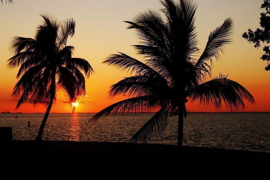 Parkland in Broward County, Florida