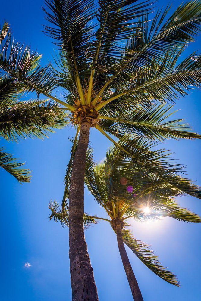 Perrine in Miami-Dade County, Florida