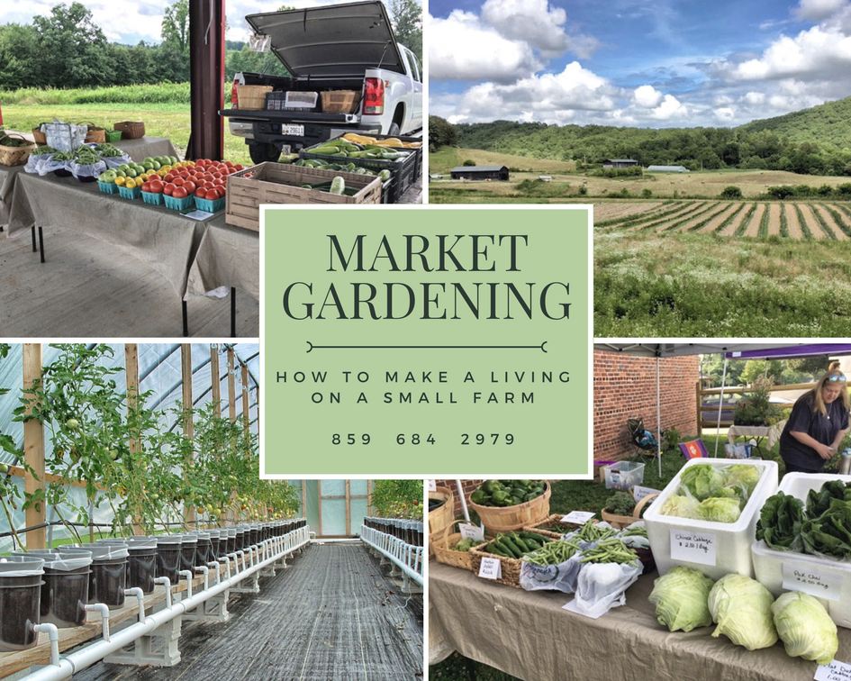 market-garden-living