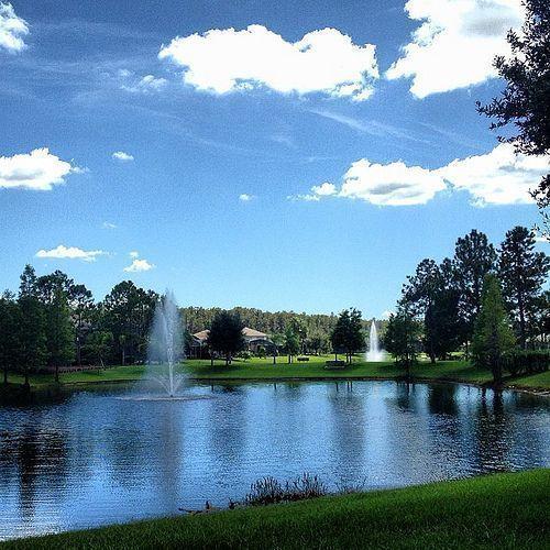 One of many wonderful views in Hunters Creek FL