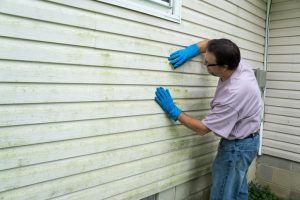 Contractor cleaning algae and mold from vinyl siding of a customers home.