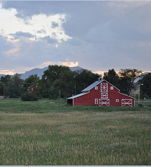 Cropped Red Barn
