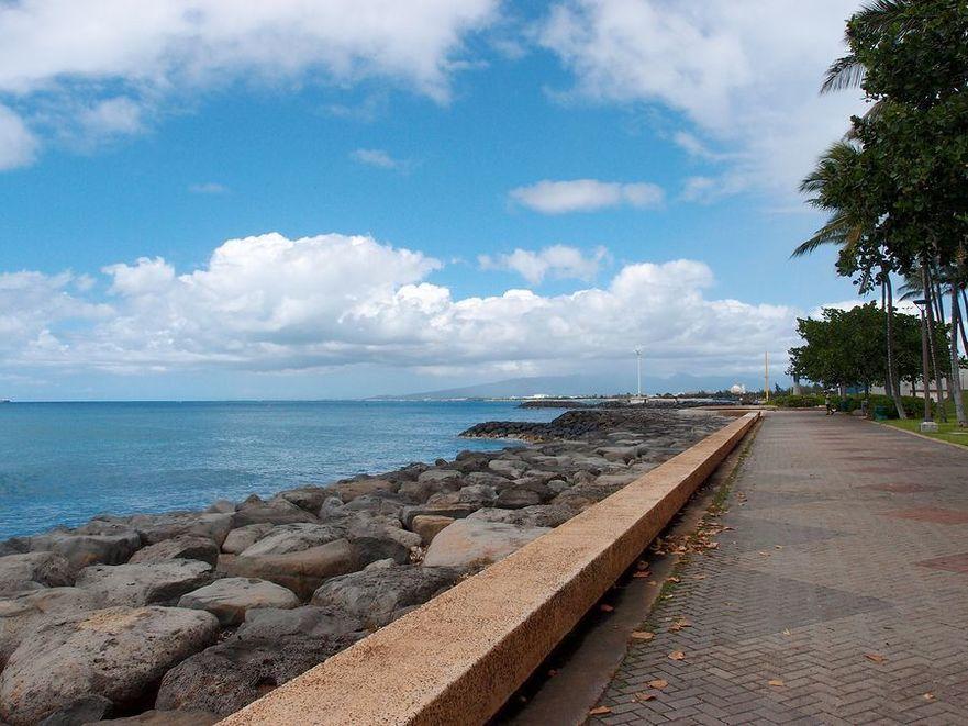 Path along Sea Wall with plants and palm tree lining the path at Kakaako Beach Park Honolulu Hawaii.