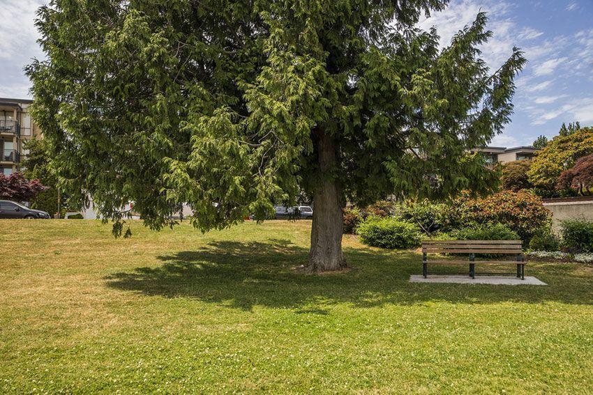 Madison-Park