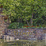 Trilogy at Redmond Ridge