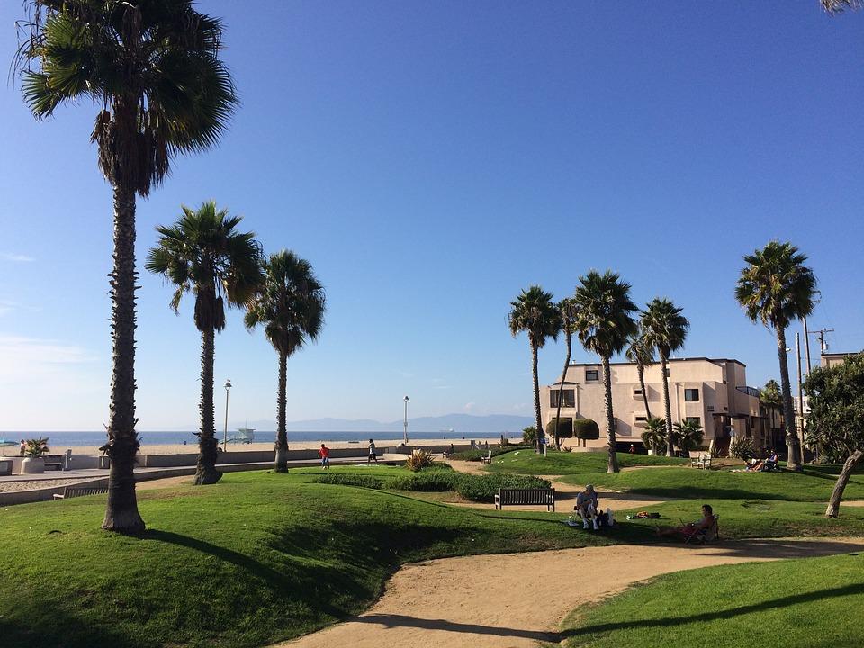 Landscape Hermosa Beach Palms Beach California