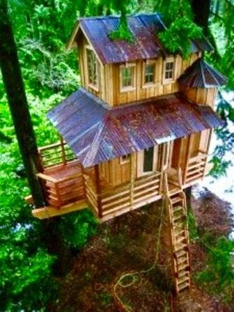 treehouse tin roof railings ladder image