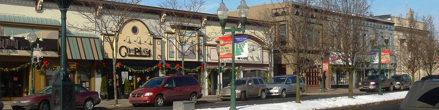 plymouth michigan real estate douwn town