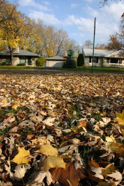 Oakland County Fall Homes