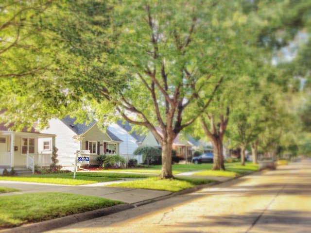 Neighborhood Feature Buyers Want In Oakland County Tree lined Street