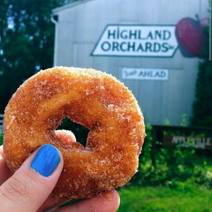donut-pic