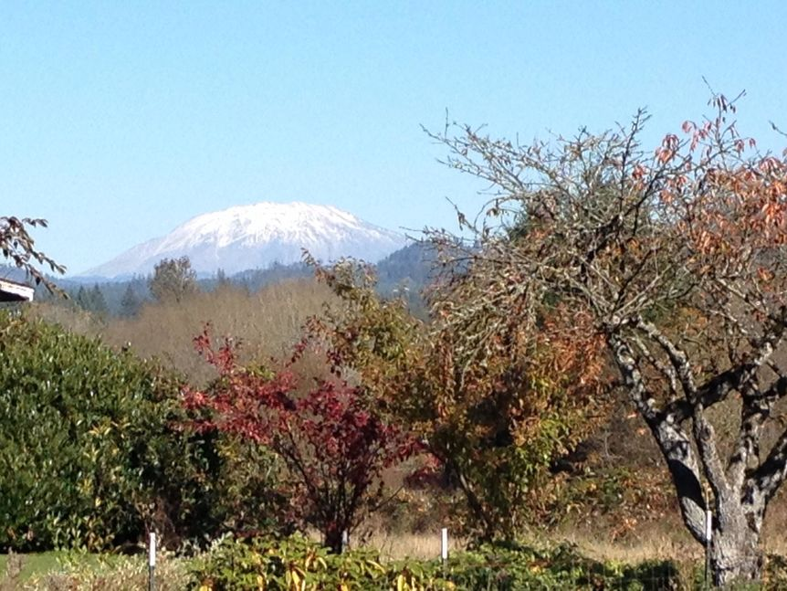 Mt. St. Helens from Battle Ground Hwy 503