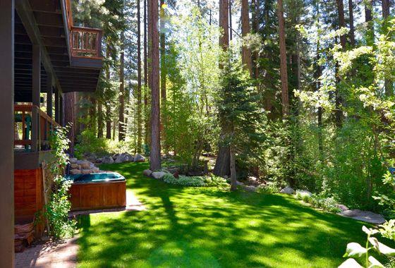 973 Dana backyard