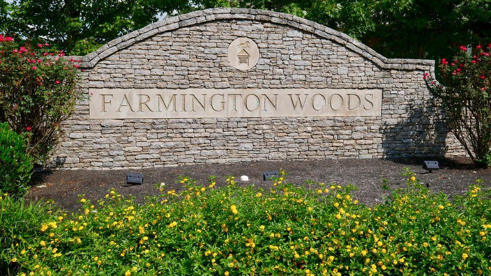 farmington-woods-neighborhood