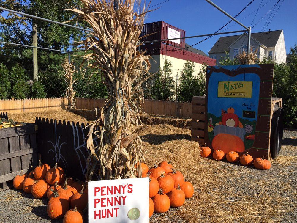 Pick your fall pumpkins at Nalls Produce
