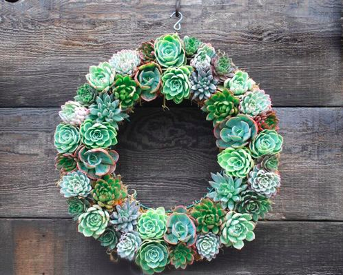 Add a spring succulents wreath