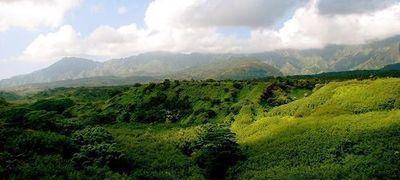 Kauai's Island School...