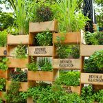 crate gardening