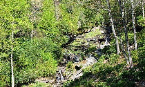 1442-owl-gap-rd-highlands-nc-52
