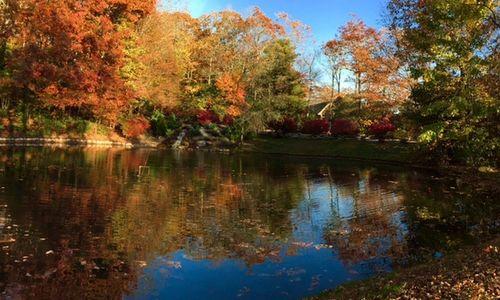 185-scenic-drive-dillard-ga-pond-autumn