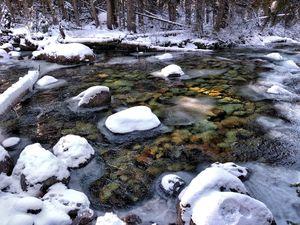 Snowy Creek Early Winter Idaho Falls