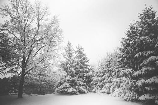 Snow Report Southeast Idaho