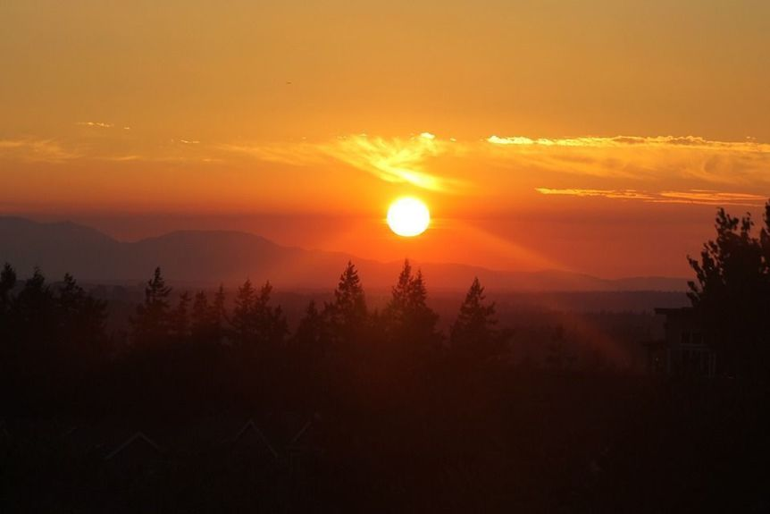 sunset-865325_960_720