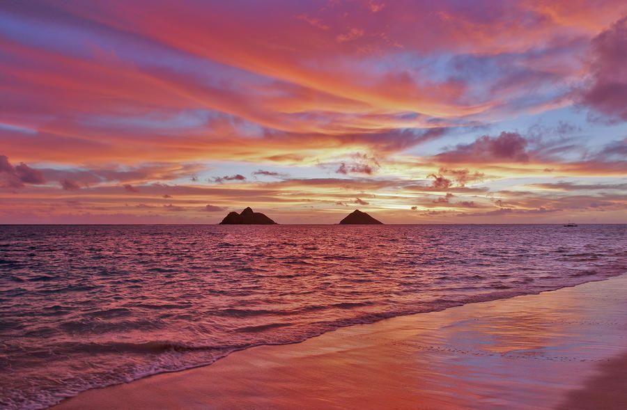 Lanikai Beach by Tomas Del Amo
