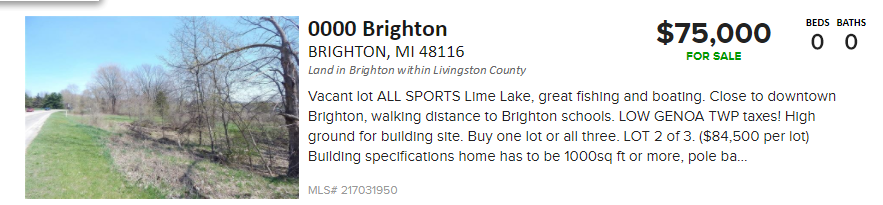 Brighton Rd Lakefront Lot