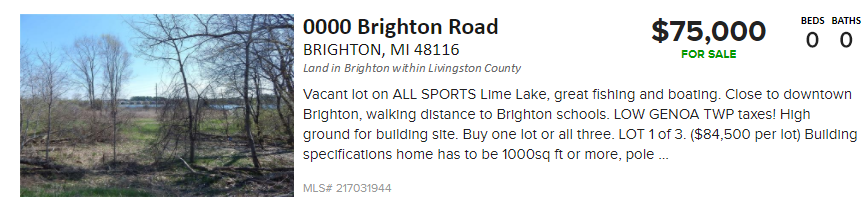 brighton rd lakefront property for sale