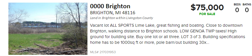 lakefront land for sale in brighton