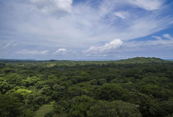 Stunning ocean view lot in Playa Grande Costa Rica