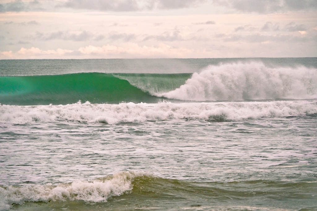 Waves and wellness in Playa Grande, Costa Rica