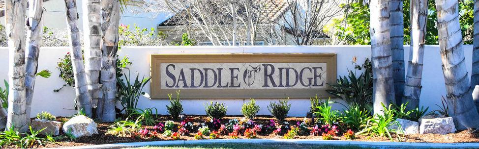 saddle-ridge