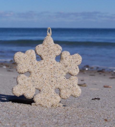 beach-snowflake