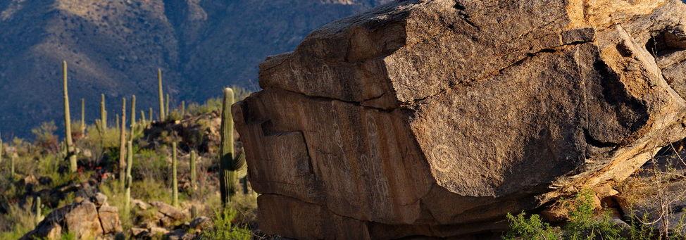 Stonegate at Stone Canyon