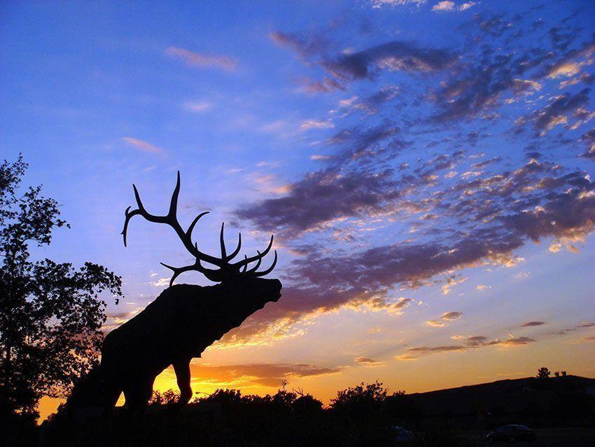 Franklin-&-South-Elk-Grove