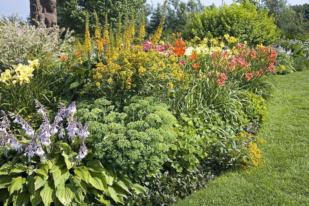 lawn to garden