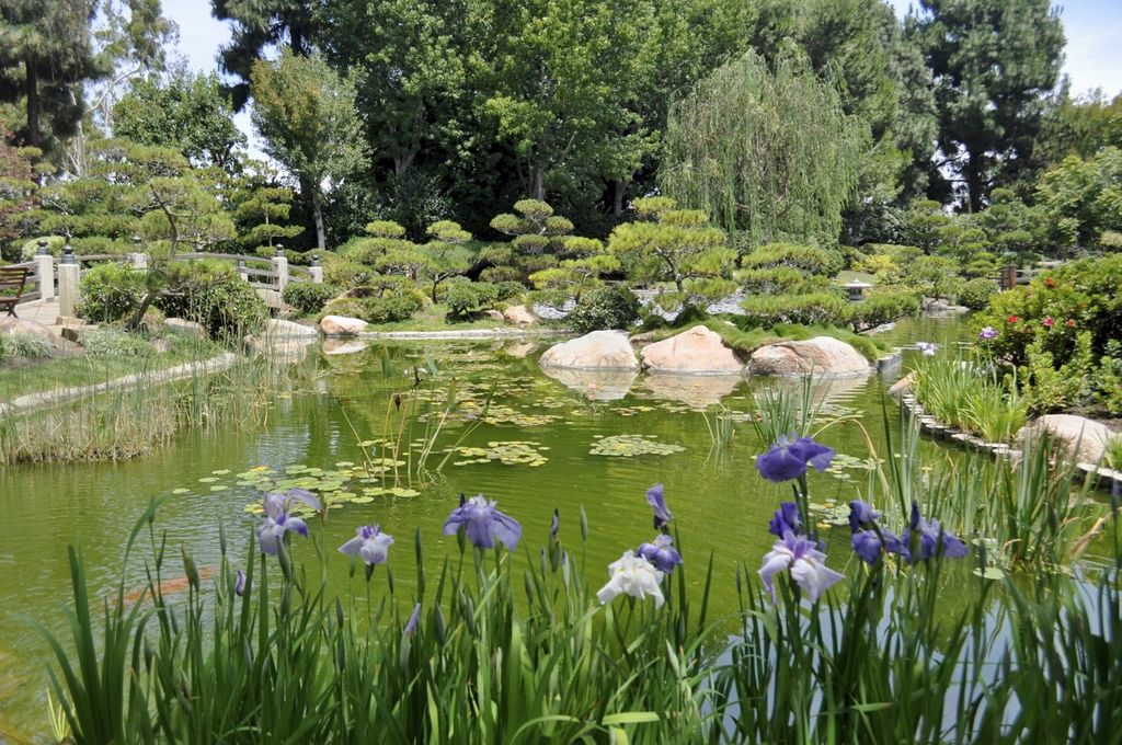 Explore Earl Burns Miller Japanese Garden - ShowMeHome.com