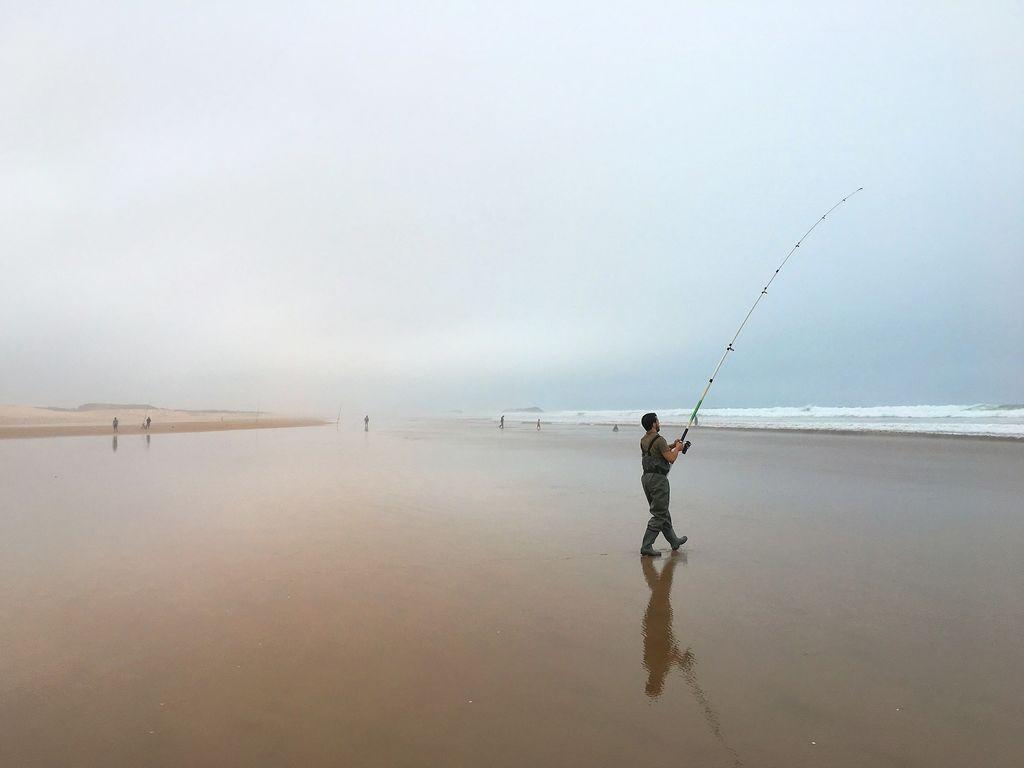 Long Beach's Fresh Catch