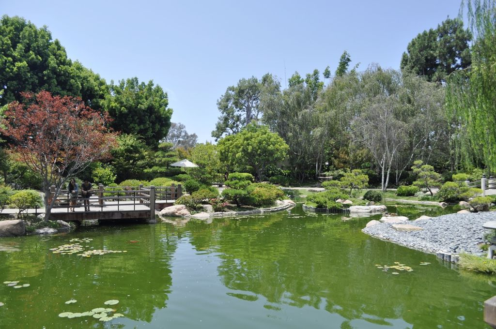 Japanese Gardens at CSULB