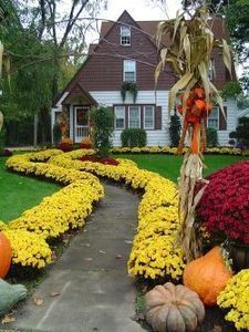 A fresh planting of fall mums can help add curb appeal.