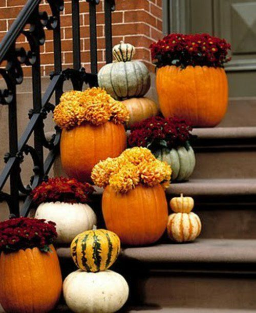 pumpkins containers