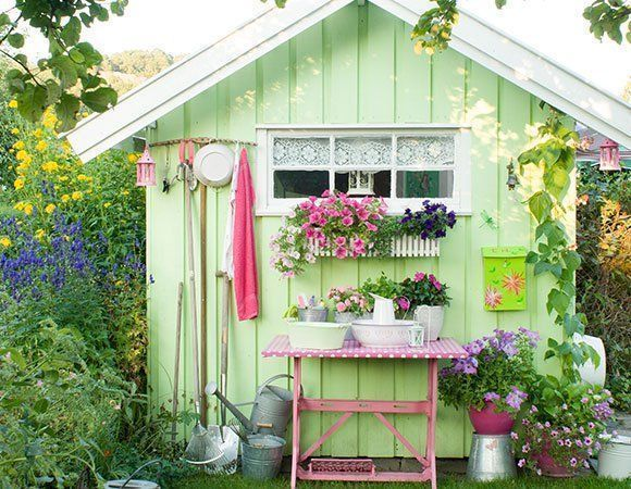 shed savvy