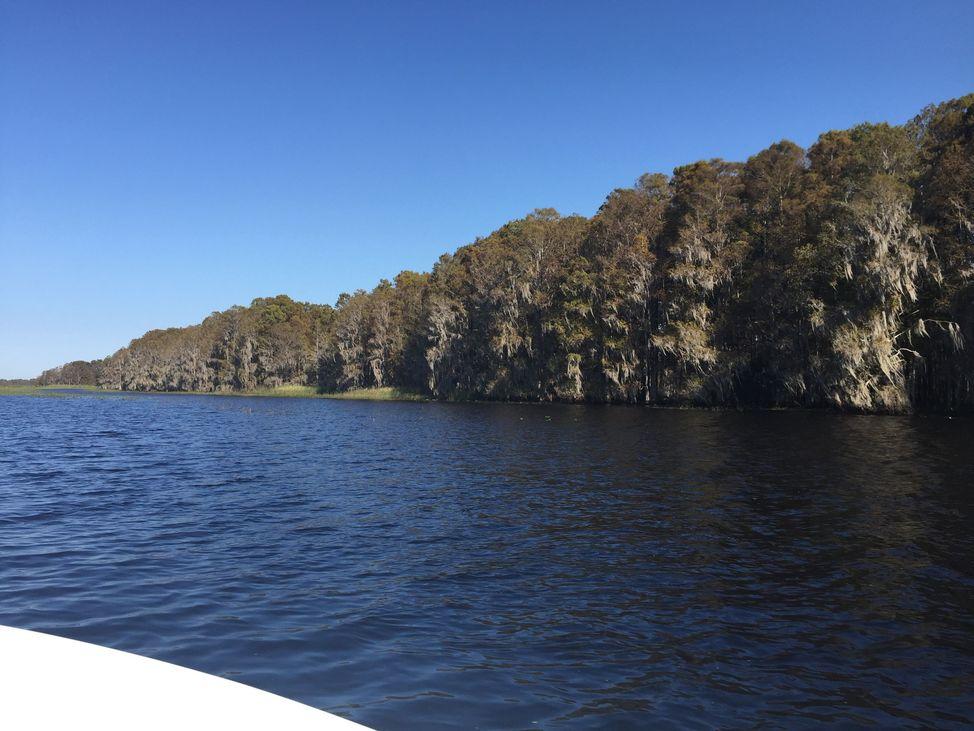 Miles of Natural Shoreline