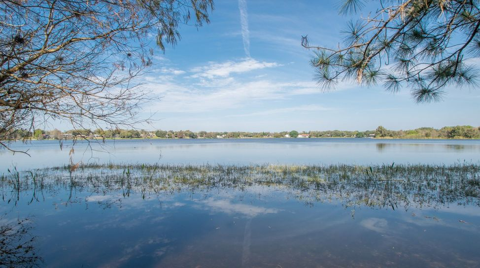 Lake Alfred