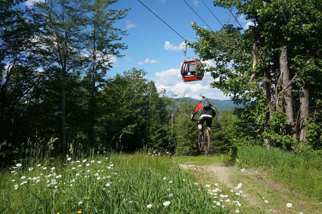 Spring Slider Mountain Biking
