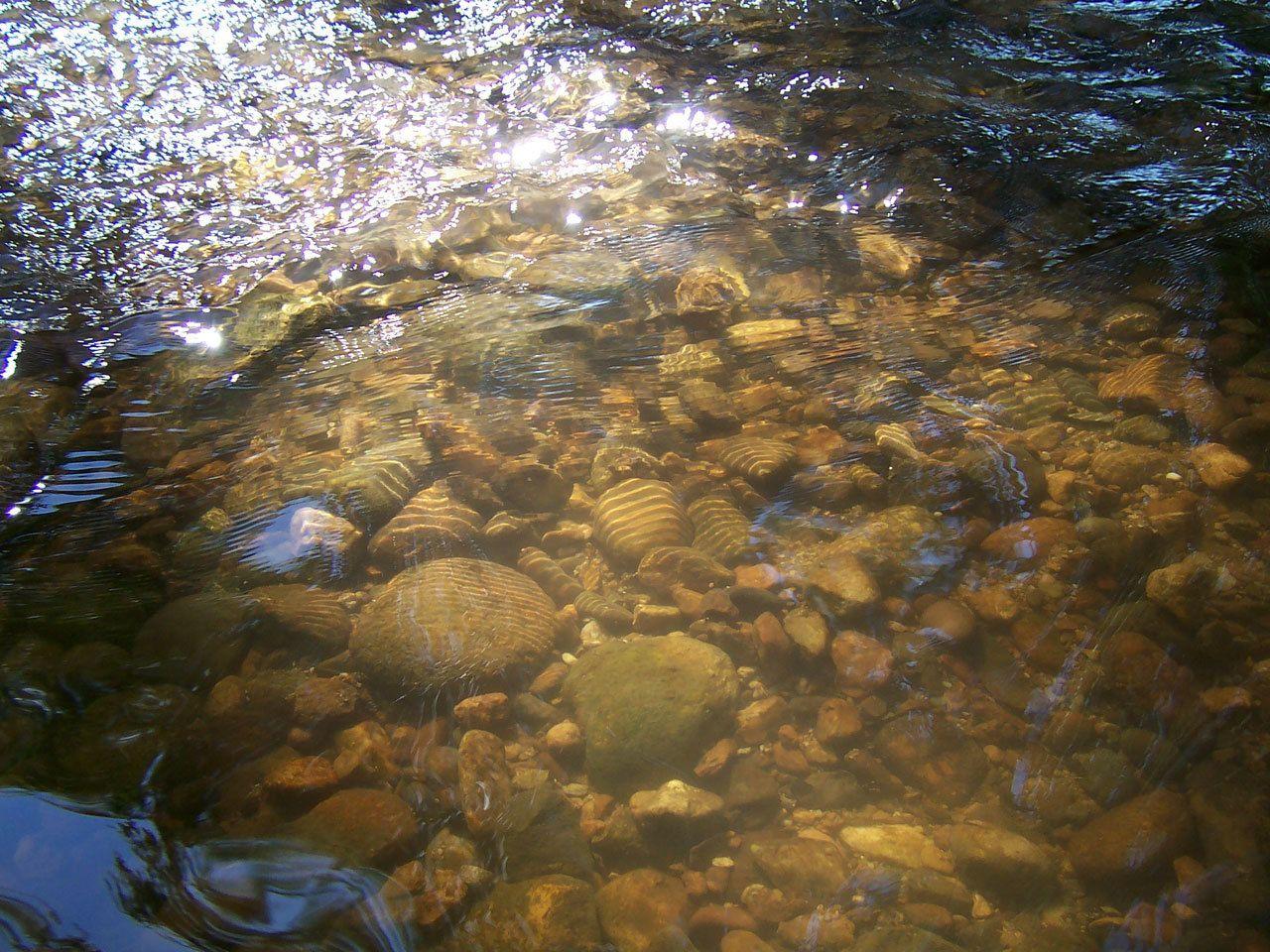 Low_creek
