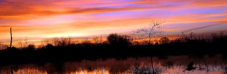 Todd Lake Murfreesboro
